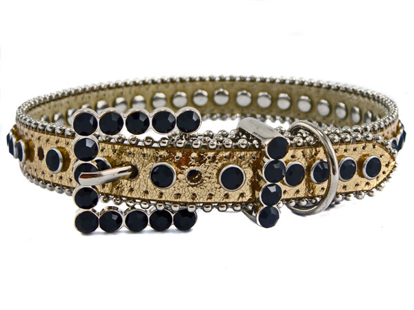 Studded Leather Dog Collar - Gold/Black
