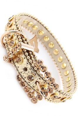 Rhinestone Dog Collar - Gold