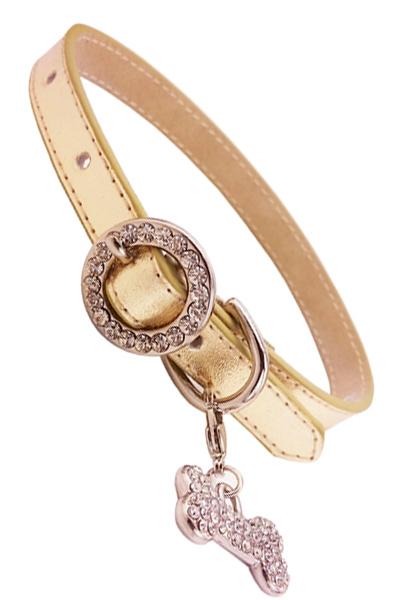 Thin Gold Rhinstone Buckle Dog Collar